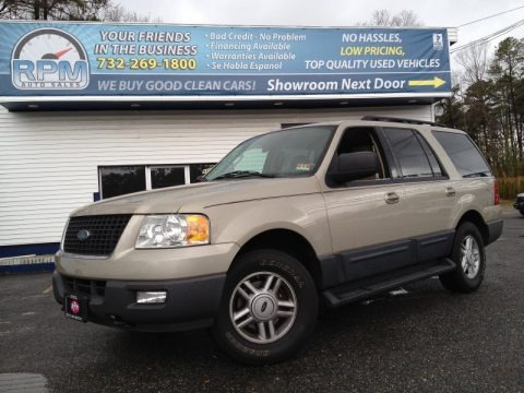 Pueblo Gold Metallic 2005 Ford Expedition XLT 4x4