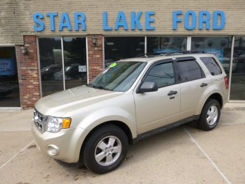 Gold Leaf Metallic 2012 Ford Escape XLT 4WD