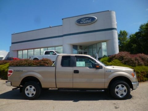 Pale Adobe Metallic 2011 Ford F150 XLT SuperCab 4x4