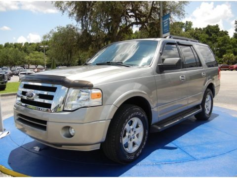 Vapor Silver Metallic 2009 Ford Expedition XLT