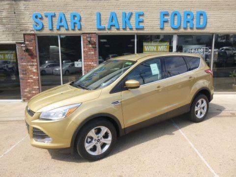 Karat Gold 2014 Ford Escape SE 1.6L EcoBoost 4WD