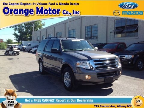 Sterling Gray 2013 Ford Expedition XLT 4x4
