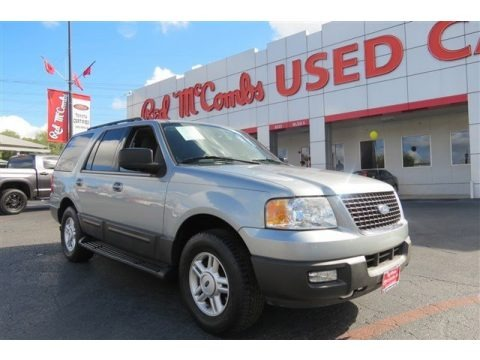 Silver Birch Metallic 2006 Ford Expedition XLT