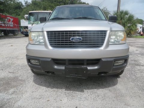 Silver Birch Metallic 2004 Ford Expedition XLT 4x4